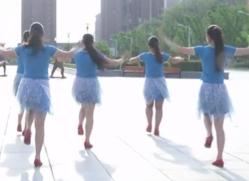 草原情最重廣場舞背面舞蹈視頻 安徽綠茶飛舞廣場舞