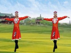 爱吾广场舞我的故乡梦中的草原正面背面 个人版 庞龙《我的故乡梦中的草原》歌词歌曲