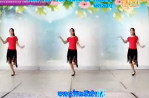 阿采广场舞《等到山花开》含背面 视频舞蹈免费下载