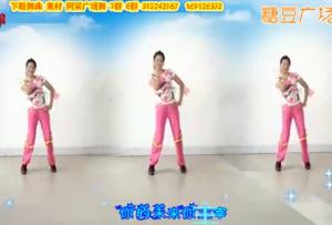 阿采广场舞《DJ嗨起来》编舞青儿 含背面 视频舞曲下载