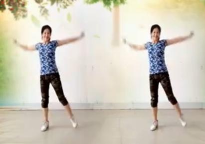 阿采广场舞《喝酒别喝醉》  含背面 视频舞蹈下载
