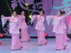 星月广场舞谁说梅花没有泪正面舞蹈视频