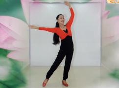 王梅广场舞我只想和你在一起含教学分解
