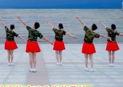 立华广场舞我们的南海 背面演示教学