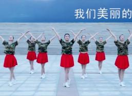 立华广场舞我们的南海团队正面舞蹈视频