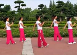 舞动旋律2007健身队广场舞溜溜的情歌含分解 32步步子舞