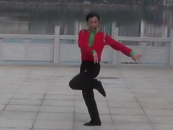 莊稼院的歌劉峰廣場舞動作分解教學
