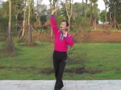 劉峰廣場舞甜甜的歌兒迎貴客 動作分解教學