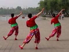 幸福跳起来星月广场舞个人背面演示 热情欢快的中老年广场舞