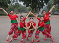 廊坊星月广场舞幸福跳起来 团队正面演示