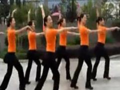 紫蝶踏歌广场舞梦高原 含阿中中教学 乌兰托娅《大高原》歌词MP3