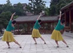 伤心城市紫蝶踏歌广场舞背面舞蹈视频