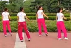 舞动旋律2007健身队《舞力全开(48步)》原创步子舞
