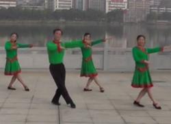 劉峰廣場舞夢中有片綠草地 烏蘭托婭《夢中有片綠草地》歌詞MP3