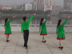 夢中有片綠草地劉峰廣場舞背面舞蹈視頻