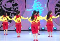 主要看氣質立華廣場舞團隊背面演示 臨盤立華廣場舞主要是看氣質