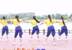 熱辣女人綠茶飛舞廣場舞背面演示 時尚動感的中老年廣場舞