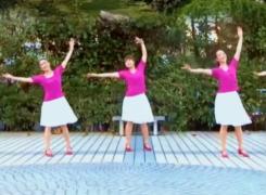 苏州盛泽雨夜广场舞爱的华尔兹含教学 中三