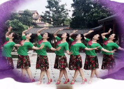 紫蝶踏歌广场舞心中的花 正面演示 马雅君《心中的花》歌词MP3