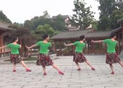 心中的花紫蝶踏歌广场舞背面舞蹈视频