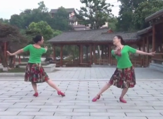 紫蝶踏歌广场舞心中的花教学视频
