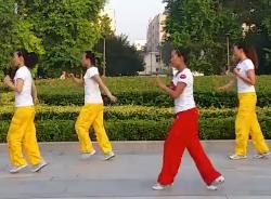 舞动旋律2007健身队广场舞渴望自由 32步步子舞