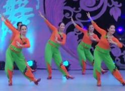 廊坊星月广场舞幸福跳起来 曹红《幸福跳起来》歌词MP3