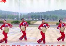 阿中中梅梅翠翠广场舞《广场舞大妈》正背面演示