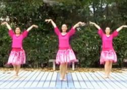 苏州盛泽雨夜广场舞排舞亲密接触 含分解 32步