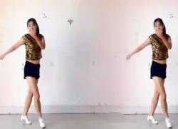 阿采广场舞DJ心雨 步子舞 含背面演示 《心雨》歌词mp3