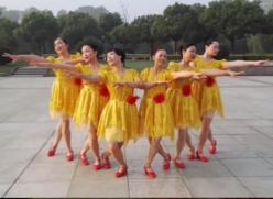 阿中中桐乡梅锦广场舞祖国万岁 正背面演示教学