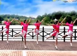 爱吾广场舞《爱吾广场舞跳起来》正反面含教学