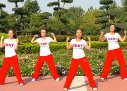 舞动旋律2007健身队广场舞舞动夏日正反面含教学 健身操