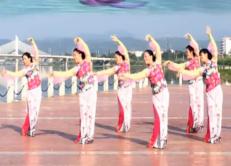 王梅广场舞荷塘月色正反面含教学 队形版 王梅携汉中缙颐舞动队