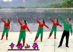 劉峰廣場舞幸福山歌正面舞蹈視頻