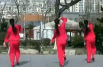 刘荣广场舞《过年的味道》原创附教学