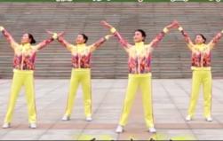立华广场舞福从中国来正背面演示教学 乌兰?#20339;擰?#31119;从中国来》歌词MP3