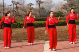 舞动旋律2007广场舞就要你红含教学 健身操 舞曲王蓉《就要你红》