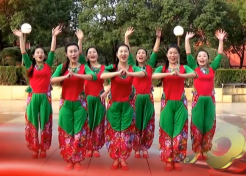 応子广场舞过年啦正反面含教学 贺东《过年啦》歌词mp3下载