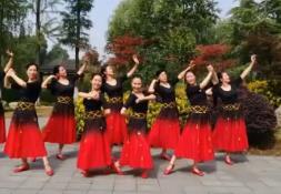 应子广场舞 欢乐激情 含背面动作分解教学