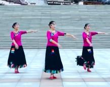 立华广场舞临盘明星队广场舞 《向往拉萨》 正背表演与动作分解