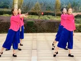 春英广场舞【弹起我心爱的土琵琶】队形 背面 教学