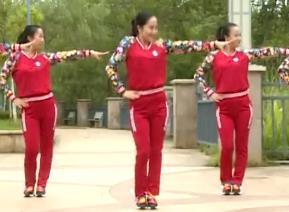 【dj大丰收老冰棍】杨丽萍广场舞