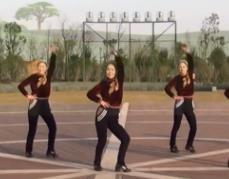 美久广场舞《别一言不合就逃离》舞曲和视频下载