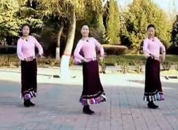 《云裳廣場舞《藏家樂》