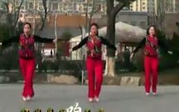 《撸起袖子加油干》刘荣广场舞原创附下载
