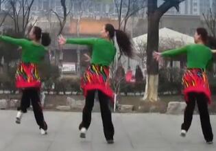 刘荣广场舞-中国东兰美 附教学和视频下载