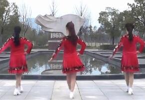动动广场舞 爱的刚刚好 初级入门步子舞