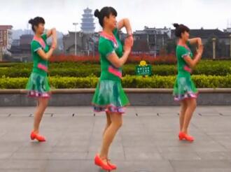 吉美广场舞 我愿做你的雪莲DJ