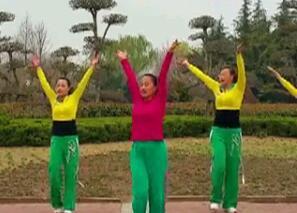 舞者风采 舞动旋律2007 视频和舞曲下载